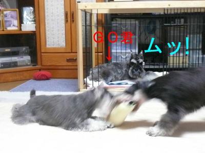 ママ遊ぼう6-s