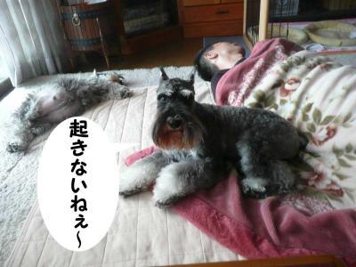 GO君2009.10.11.2-s