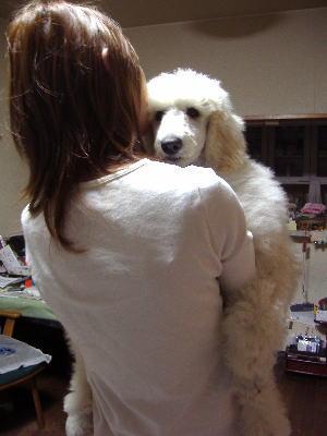 抱き犬ステップ