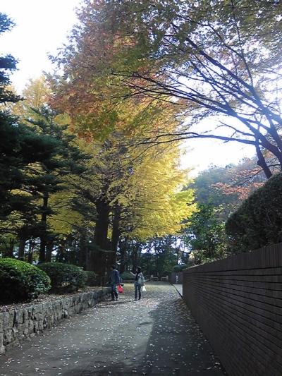 ご近所の秋7