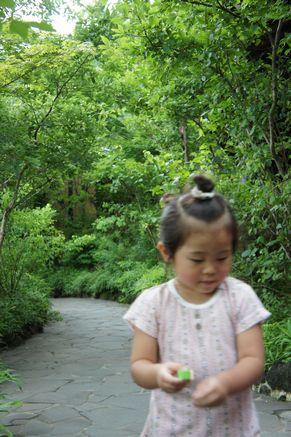 阿蘇の温泉