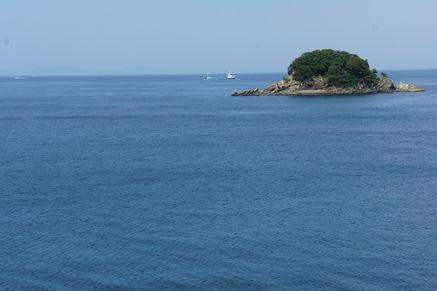 つくみイルカ島9