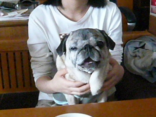 2010_0328suika0009b.jpg