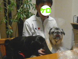 2010_0410kero0004b.jpg
