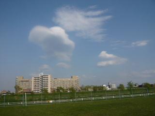 2010_0517sun0022b.jpg