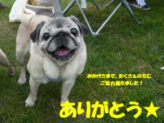 2010_0628fugami0058b.jpg
