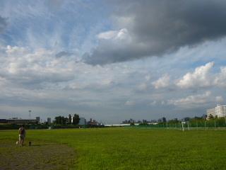 2010_0813kawa0026.jpg