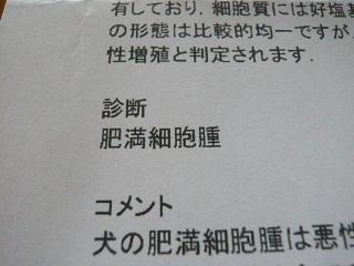 2010_0828mokukin0010b.jpg