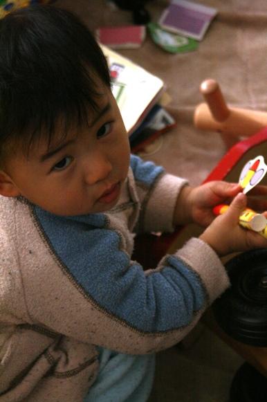 お箸の練習 20090128