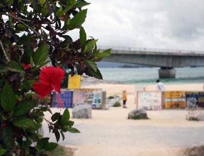 ビーチに到着!!20100521 古宇利島