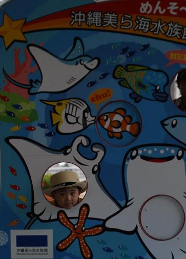 美ら海水族館 20100521