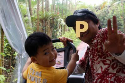 僕の運転だよ! 20100521 ナゴパイナップルパーク