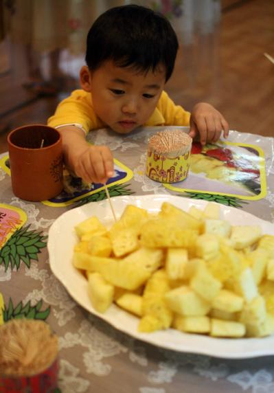 パイナップル 試食し放題!! 20100521ナゴパイナップルパーク