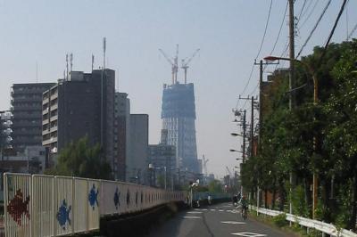 20091020-02.jpg