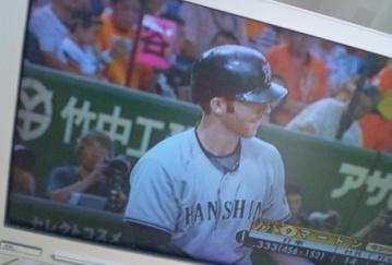 1008野球