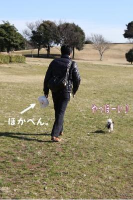コピー (2) ~ inu4