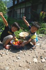夏休み(白川郷・畑2)