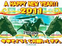2011NewYear_Pelusa.jpg
