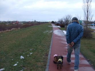 川沿いは遊歩道