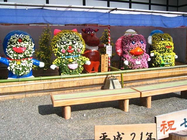菊花展 七五三記念写真舞台