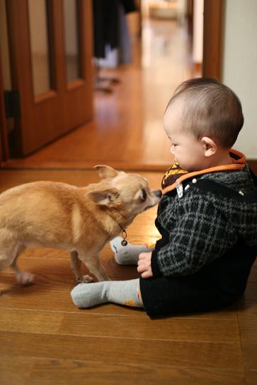 kiss-sougo3.jpg