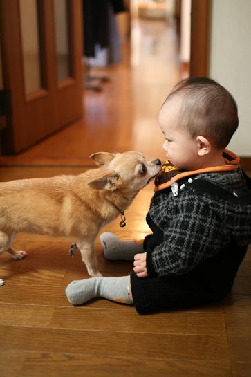 kiss-sougo4.jpg