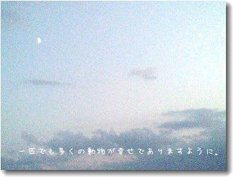 image5901504.jpg