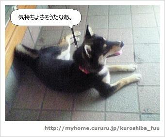 image7169645.jpg