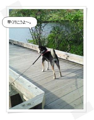 image7684630.jpg