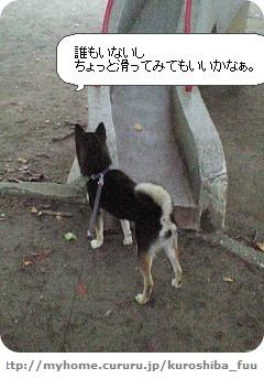 image9016514.jpg