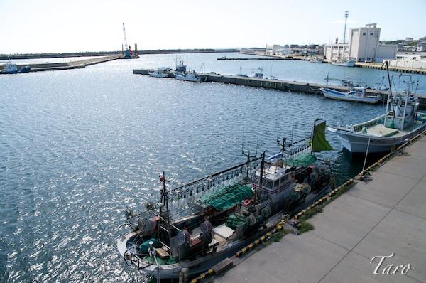 青苗漁港人工地盤