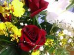 薔薇、あっぷ