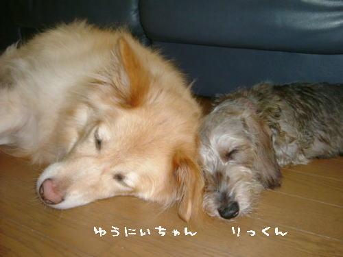 yuuki&riku