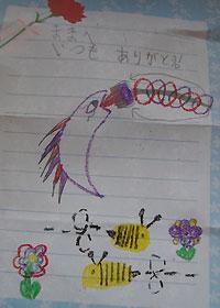 日本語の手紙
