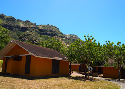 キャンプサイト:山側