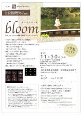 bloom-1_convert_20081223122133.jpg