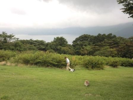 芦ノ湖を望めます