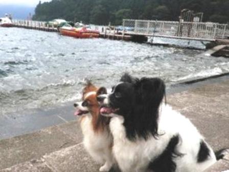 芦ノ湖ボート乗り場にて2