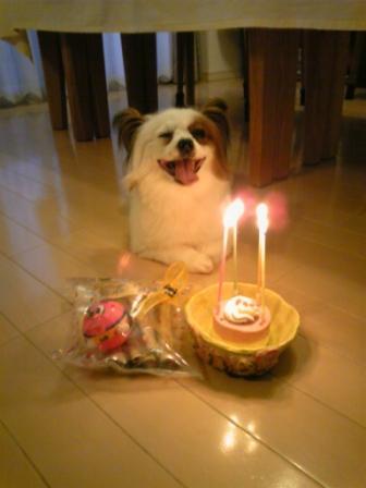 コピー ~ 2011-6-20-1 4歳の誕生日