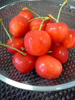 cherry4.jpg