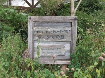 DSCF0990.jpg
