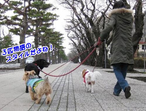 散歩スタイル