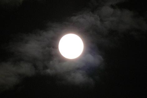 十五夜お月さん♪