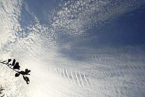 うろこ雲♪