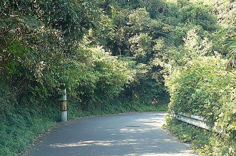 畑への道♪