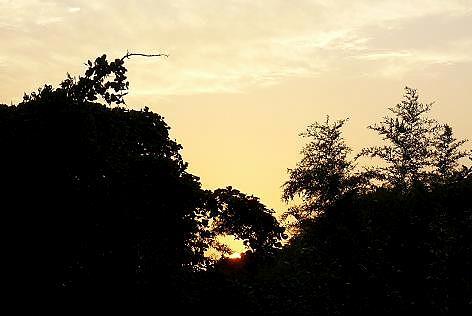 夕日が落ちて・・・