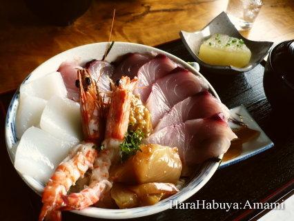 シーハンターの海鮮丼