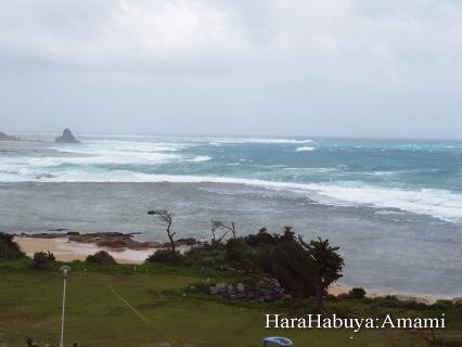 土浜(2009/08/06)