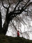 桜の下のお地蔵さん