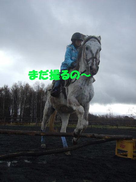 2010_1113bb